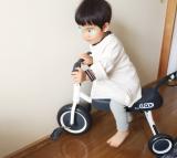「三輪車デビューのその後」の画像(11枚目)