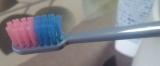 ハイカラ♪カラフル♪な歯ブラシ 『ハイカラフル』の画像(2枚目)