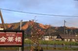 女川観光旅行の画像(3枚目)