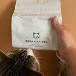 無添加キャットフードのお試しをウチの猫達にあげてみました。袋を見せた瞬間から興味津々の様子のウチのしま5歳🐈そしてウチのトラちゃん7歳🐈袋を開けると匂いがしたのか物凄くクンクンし始めました…のInstagram画像