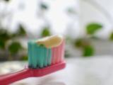 「歯茎に効く! ロート製薬ハレス歯磨き」の画像(4枚目)