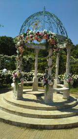 京成バラ園に行ってきましたの画像(13枚目)