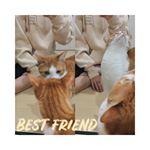 ♡猫と撮れた日は幸せ🐈🙋🏼♀️この前も紹介したけどこのパーカー生地とか形が良すぎて色違いGETでも、発売してもすぐSOLD OUTになっちゃうからまた、発売されるときに…のInstagram画像