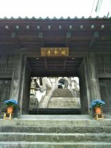 肉団子のカンタン酢あんかけ 長崎旅行2日目の画像(22枚目)