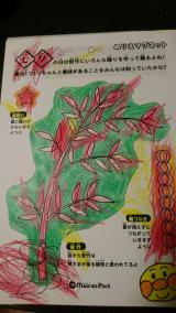 「七夕ぬりえマグネット」の画像(5枚目)