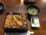 天重: 食いしん坊@うずちゃん日記の画像(1枚目)