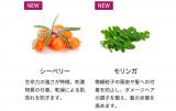 スーパーフード成分配合のスカルプケア☆ピーバリアスカルプシャンプー&トリートメント☆の画像(2枚目)