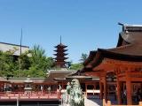 何十年か振りの広島旅行♪の画像(9枚目)
