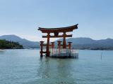 何十年か振りの広島旅行♪の画像(4枚目)