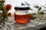 「ニューカレドニア 赤こしょうのハチミツ レポⅡ」の画像(2枚目)