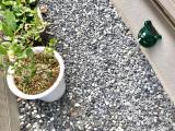 #家庭菜園に害獣撃退器の画像(5枚目)