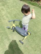 三輪車のステップアップの画像(2枚目)