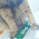 【愛猫・愛犬用サプリ〜MREフードプラス〜】の画像(4枚目)