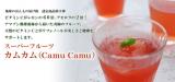 """「ビタミンC&ポリフェノールが世界一! スーパーフルーツ""""カムカム""""の果汁」の画像(1枚目)"""