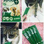 今回試させていただいたのは、株式会社スターネットさまの 愛犬、愛猫用健康サポートジュレ MRE FOOD+世界34ヶ国で特許取得の健康成分「MRE」を配合した、発酵エキスです💕 M…のInstagram画像