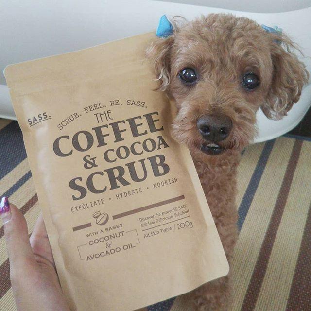 口コミ投稿:合同会社MAM&d.さんのSASS.コーヒー&ココア スクラブを愛犬でモニターさせていただ…
