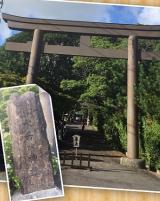 隠岐造り~水若酢神社の画像(1枚目)