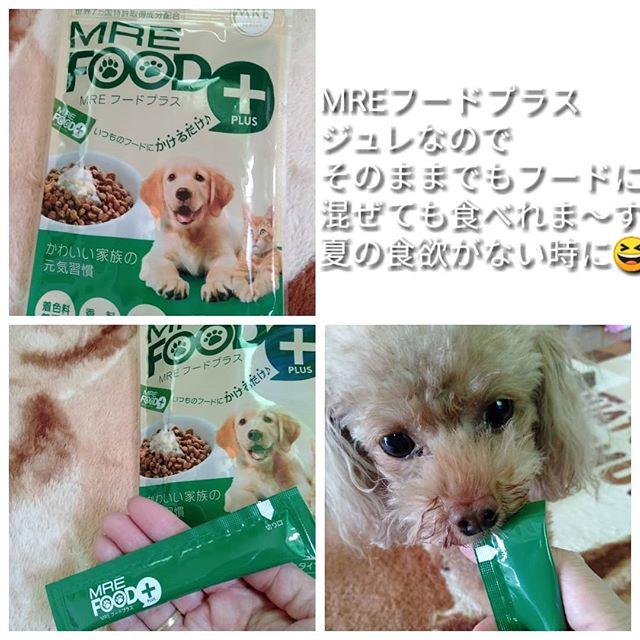 口コミ投稿:□『愛犬・愛猫用 MREフードプラス 10g×14本入』当選しました。 ※世界34ヶ国で特許取…