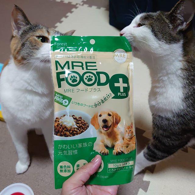 口コミ投稿:【MREフードプラス】という、動物本来がもっている健康を維持する力をカラダの内側か…