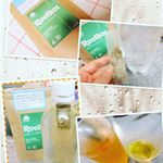 ペットボトルで作る日本茶製法でオーガニックの生葉ルイボスティ飲んでみました。オーガニック認証を取得した最高級グレードの茶葉を100%だそう。茶葉パックをペットボトルの入…のInstagram画像