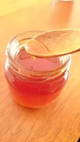 自然に囲まれたニューカレドニアのハチミツのお味は?!の画像(1枚目)