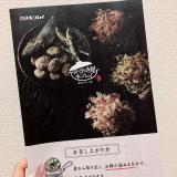 「【なべやき屋キンレイ】お水がいらない 横浜家系ラーメン」の画像(1枚目)