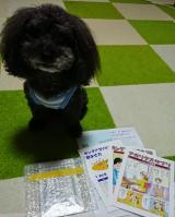 口コミ記事「ペット用キングアガリクスの通販会社ファンサイト参加中」の画像