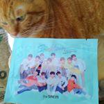 御パックが届きました🎵韓国コスメのザセムが日本でオンラインショップをOPENした記念に作られたそうですよ🎵@thesaemcosmetic.japan この男の子達は、K-POPアイドルの…のInstagram画像