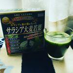 サラシアが入った青汁ということで、つい間食をしてしまう私には丁度良いのかも?乳酸菌と難消化性デキストリンも配合されているので私の動きの悪いお腹にも効果があれば嬉しい!味は普通の青汁。昔飲ん…のInstagram画像