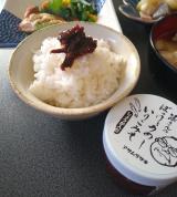 いりこがクセになるご飯のおとも♪ 篠さんのぼっけぇうめーいりこみそ(しょうが入り)の画像(1枚目)