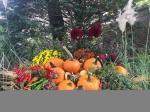 「ダイエット・ブッフェ ~水素水・宿便・ワンダーコア: くみたろうのカラフルな日々 シーズン2」の画像(1枚目)