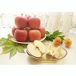 🍎#りんごの季節到来 🍎今やりんごは1年中食べられる果物ですが、やっぱり寒くなると特に食べたくなりませんか?私は野菜も果物も皮ごと(時には種も)食べるのが好き。でも日本の農薬事情を知る…のInstagram画像