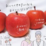 〈宣伝&ポエム〉りんご愛を語らせてくれㅤㅤㅤㅤㅤㅤㅤㅤㅤㅤㅤㅤㅤレシピでもなく、ただただりんごが好きって話をします。梨派の人もよかったら、見たり見なかったりしてください。ㅤㅤㅤ…のInstagram画像