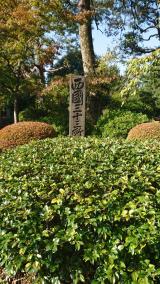 護国寺をめぐる歴史散策の画像(7枚目)