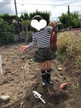 秋!!トトロの森&MEDIBABYの画像(2枚目)