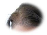 白髪ケア化粧品座談会の画像(15枚目)