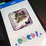 みんなのバッチを注文してみました。自分で好きなピンバッチやマグネットを作れるアプリです。好きな写真をスタンプなどでデコって注文すると自宅に届きます。娘がデザインを作って注文しました、子供の…のInstagram画像