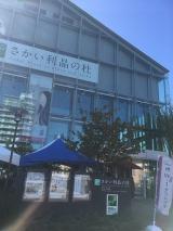 ぶらり~堺文化材特別公開 見て歩きの画像(4枚目)