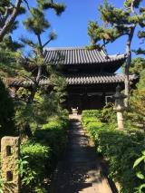 ぶらり~堺文化材特別公開 見て歩きの画像(1枚目)