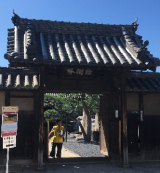 「ぶらり~堺文化材特別公開 見て歩き」の画像(3枚目)