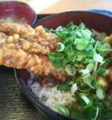 「やっと食べた~活穴子丼 イルカ」の画像(4枚目)