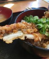 「やっと食べた~活穴子丼 イルカ」の画像(5枚目)