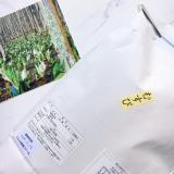 「水芭蕉米 新米「むすび(おぼろづき)」♪」の画像(2枚目)
