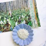 「水芭蕉米 新米「むすび(おぼろづき)」♪」の画像(1枚目)