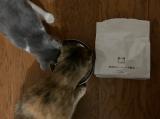 無添加キャットフード安心 猫が好きな味のようだの画像(4枚目)