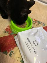 無添加キャットフード安心 猫が好きな味のようだの画像(5枚目)