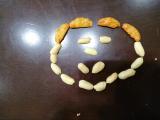 七田式プリント、柿の種。の画像(1枚目)