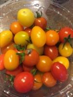 「宅配野菜の偉大さ: くみたろうの カラフルな日々 シーズン2」の画像(2枚目)