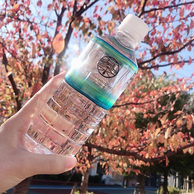 口コミ投稿:岩深水 お試しセット【2L×3本、500ml×5本】とっても飲みやすいまろやかなお水で…
