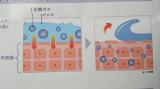 炭酸パック プルリの画像(2枚目)